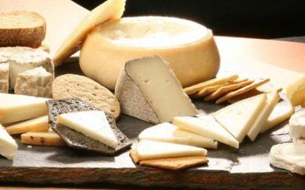 La cata de queso, cinco niveles - Mallorca a la Carta